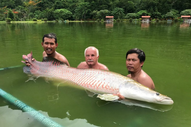 Exotic fishing in Phang Nga – picture 21